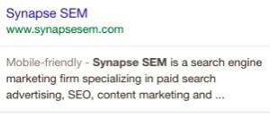 Synapse Google Listing
